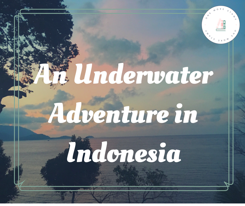 An Underwater Adventure in Indonesia WWW.ONEMORESTAMP.COM