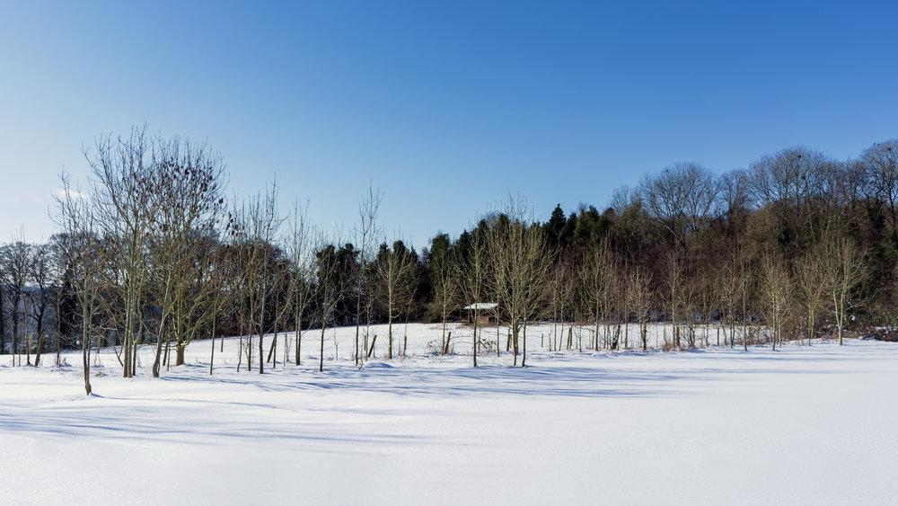 Winsley in Winter 01 C.jpg