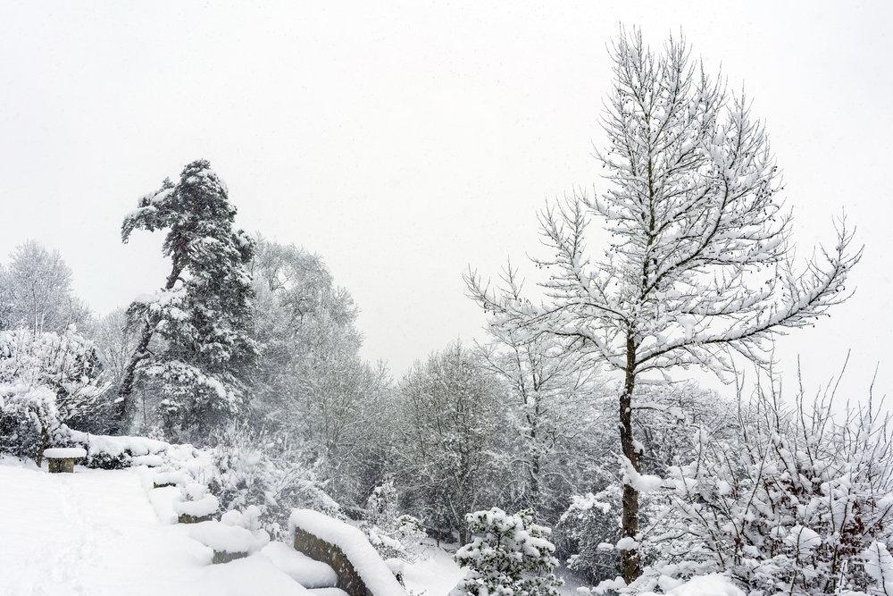 Winsley in Winter 07 C.jpg