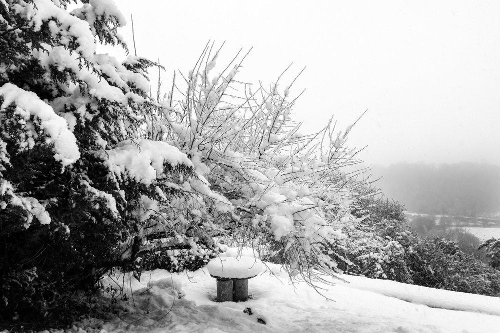 Winsley in Winter 08 M.jpg