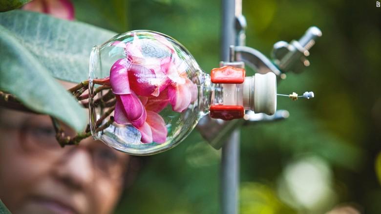Futuristic-fragrance-1.jpeg