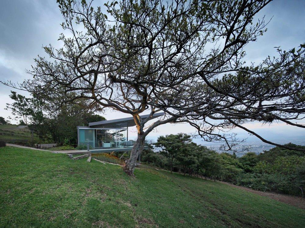 Estancia-y-Ficus-1.jpeg