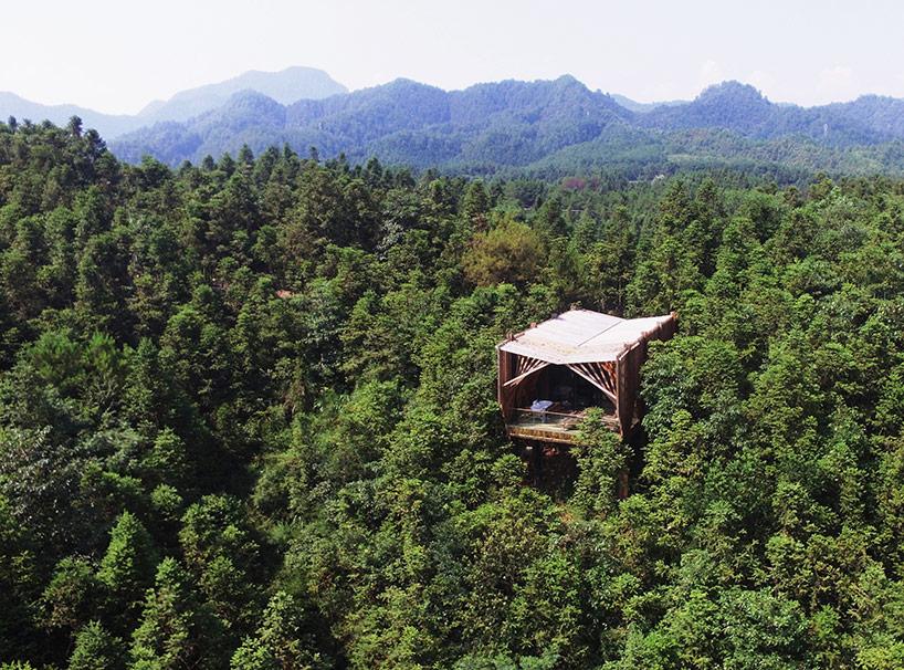 treehouse-m-1.jpg