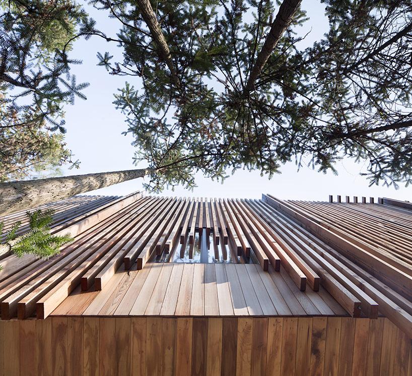 treehouse-m-2.jpg