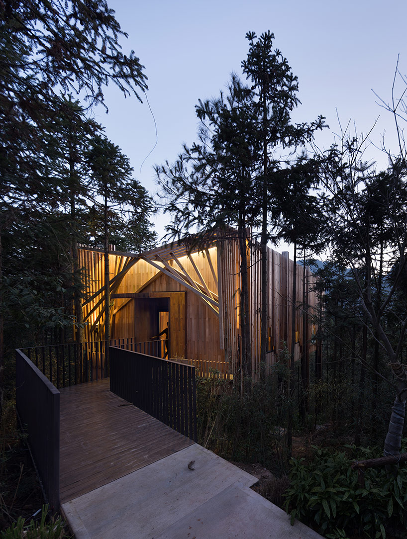 treehouse-m-7.jpg