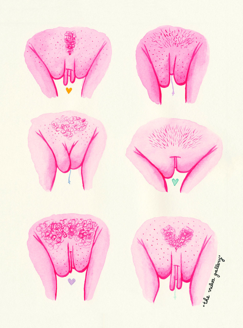 The Vulva Gallery for FEM Project