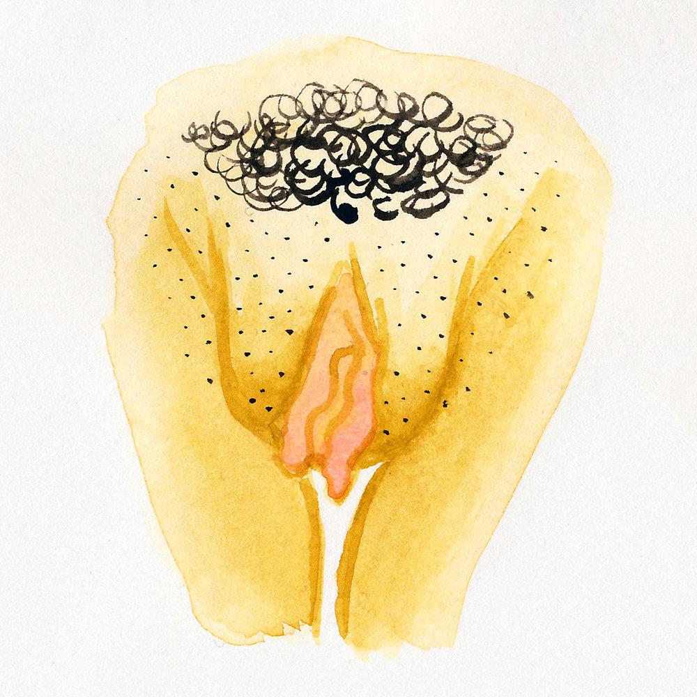 Vulva Gallery Yellow28.jpg