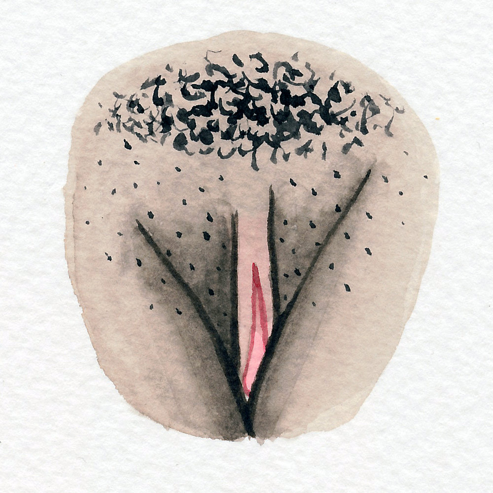 Vulva Gallery Brown136.jpg