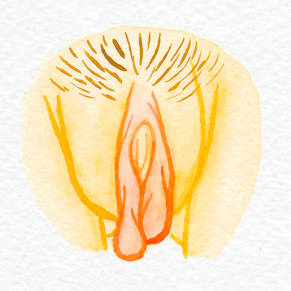 Vulva Gallery Yellow80.jpg
