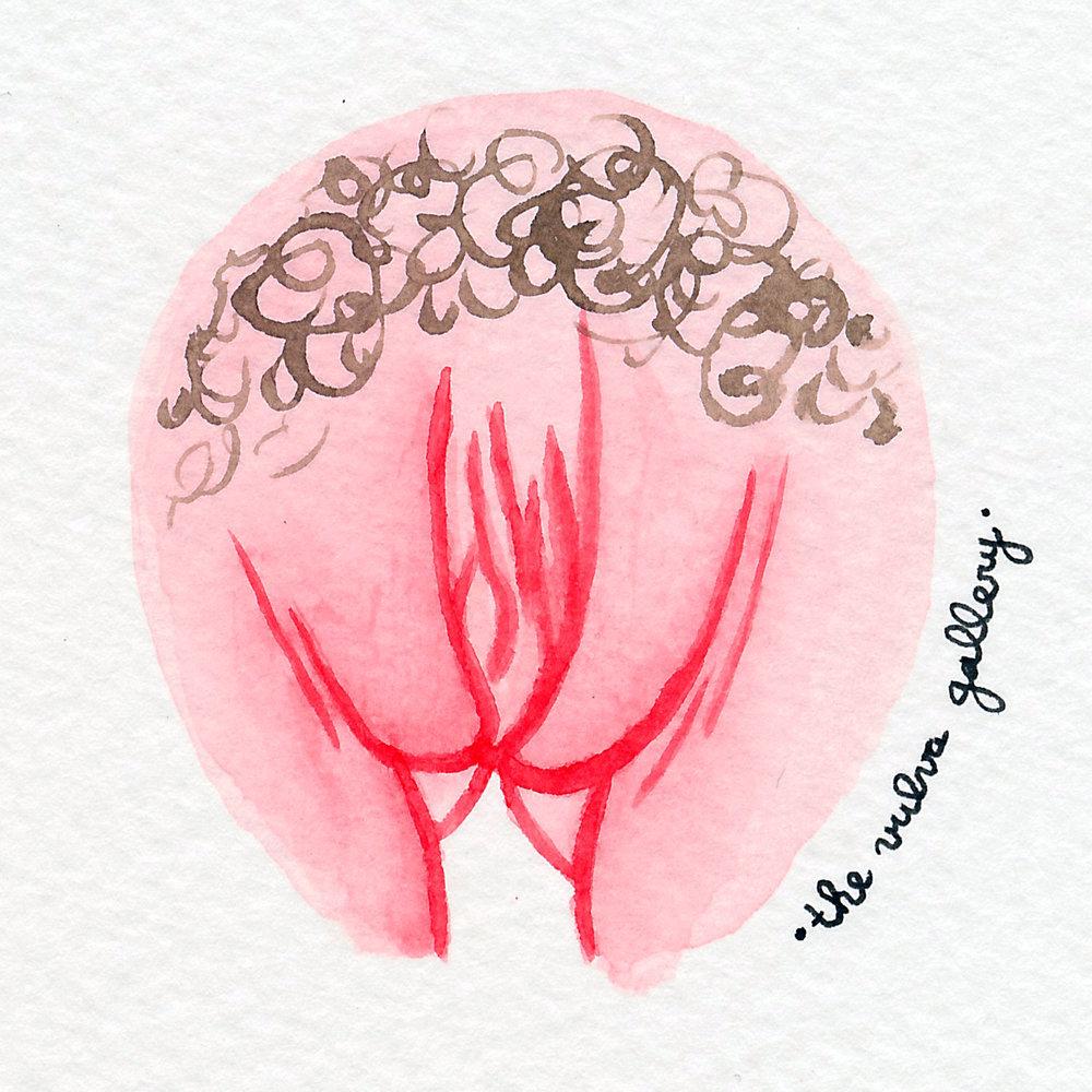 Vulva Gallery Pink111.jpg