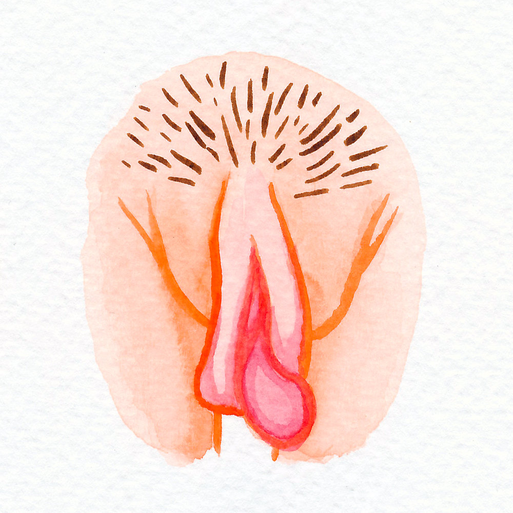 Vulva Gallery Orange7.jpg