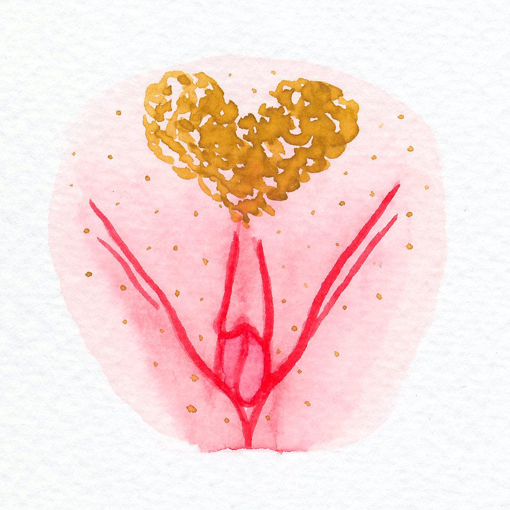 Vulva Gallery Pink136.jpg
