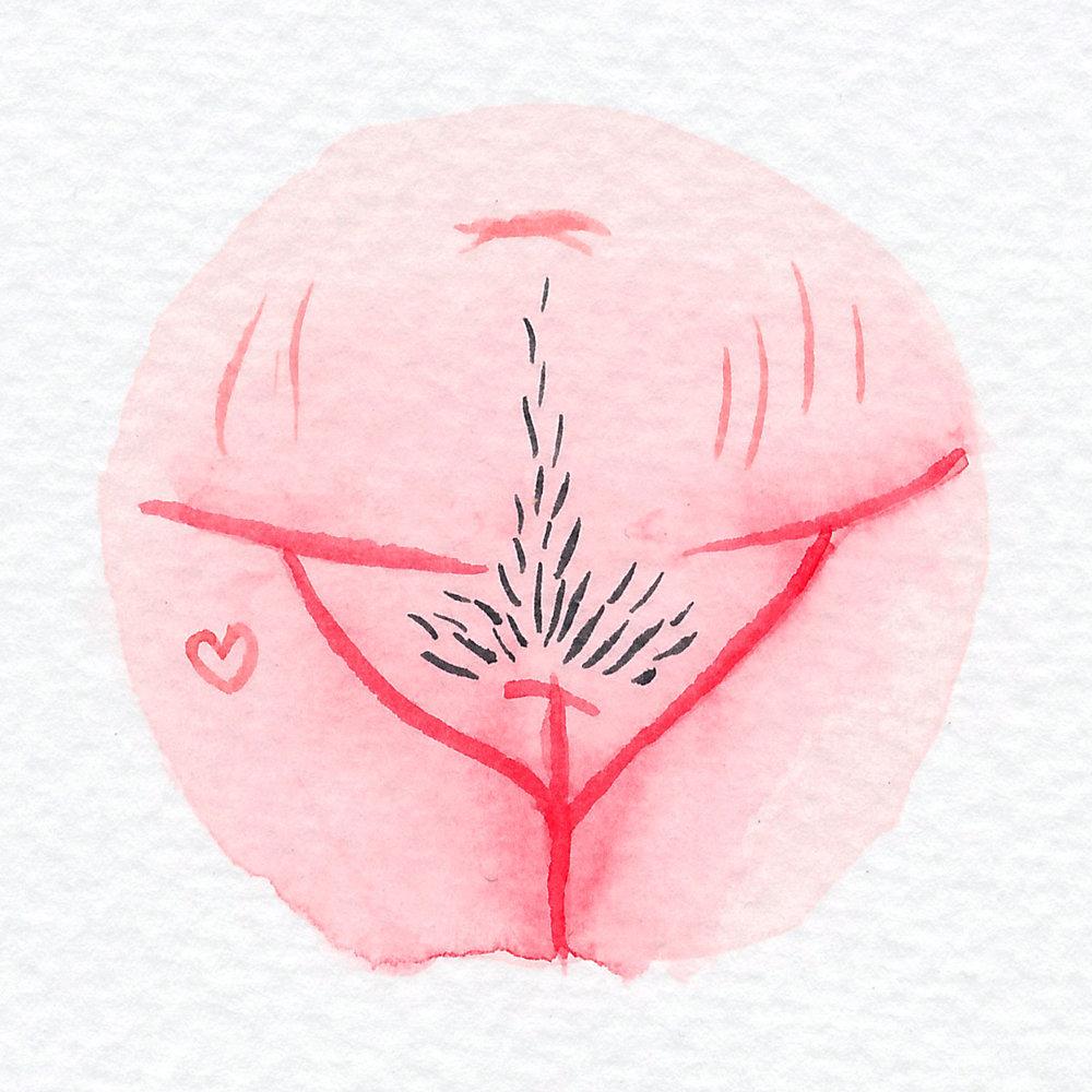 Vulva Gallery Pink134.jpg