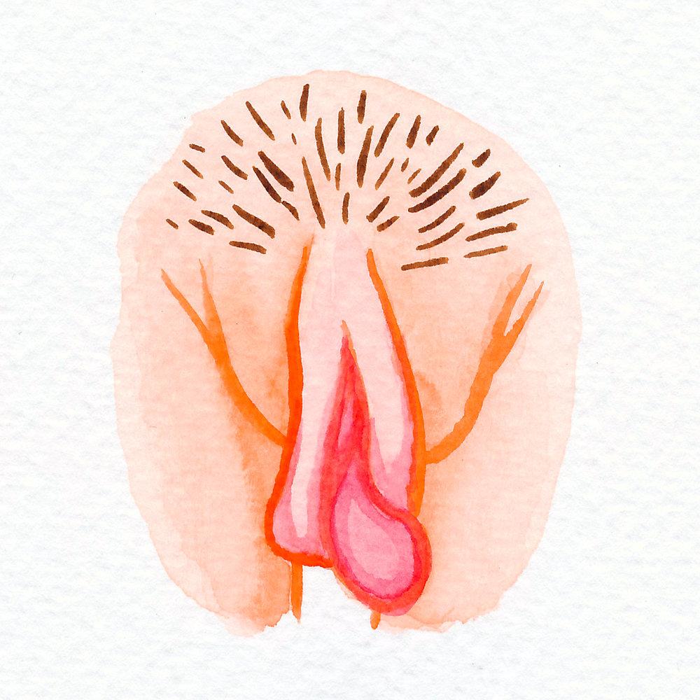 Vulva Gallery Orange7.jpg