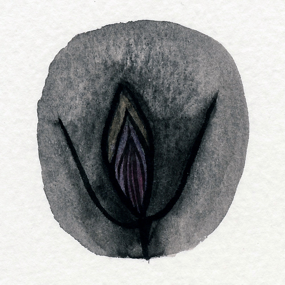 Vulva Gallery Brown204.jpg