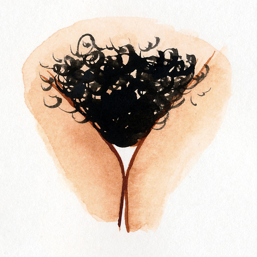 Vulva Gallery Brown48.jpg