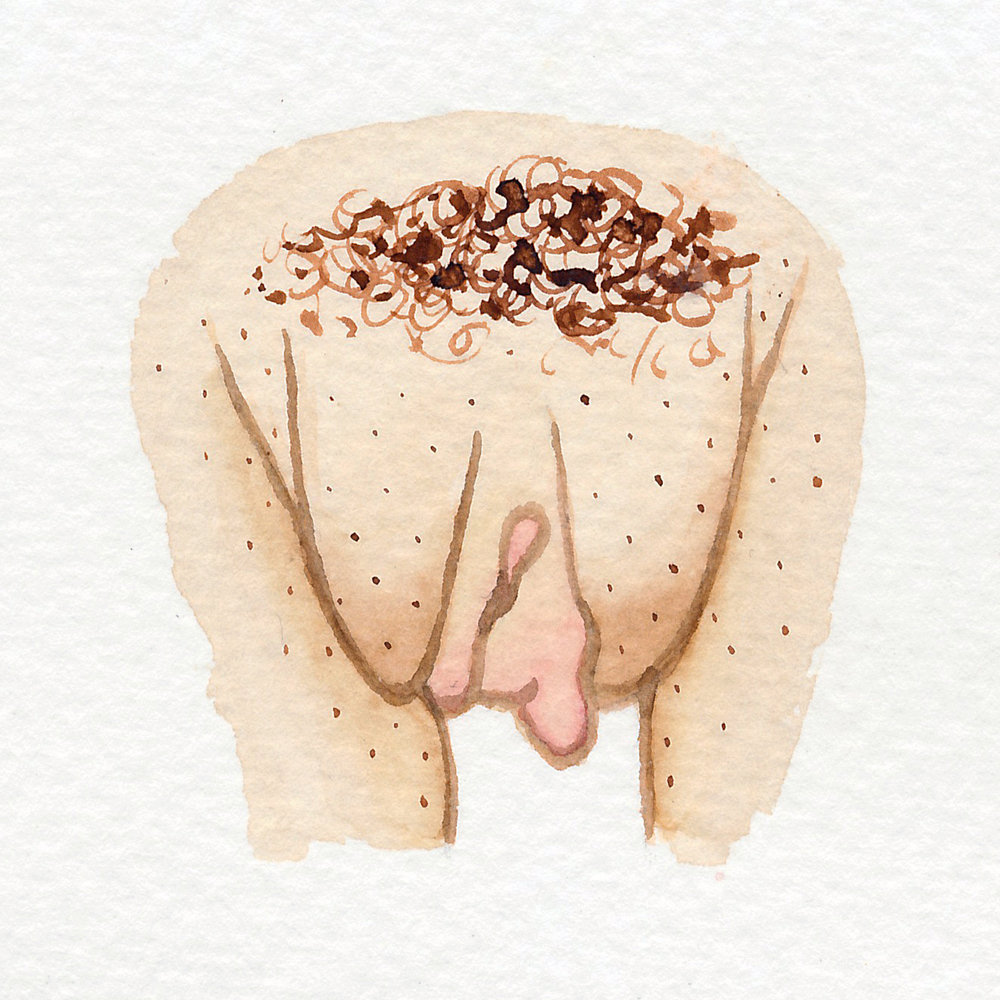 Vulva Gallery Brown73.jpg
