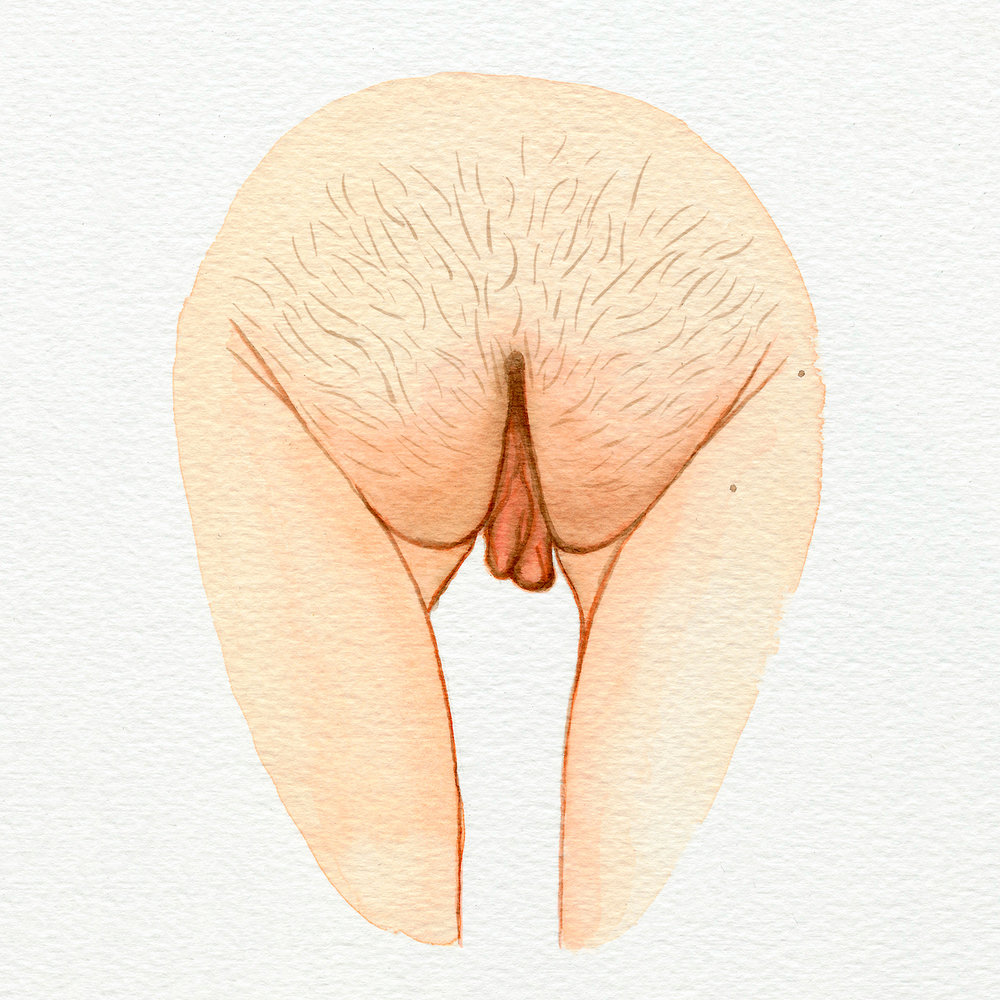 The Vulva Gallery - Vulva Portrait #9 (square).jpg