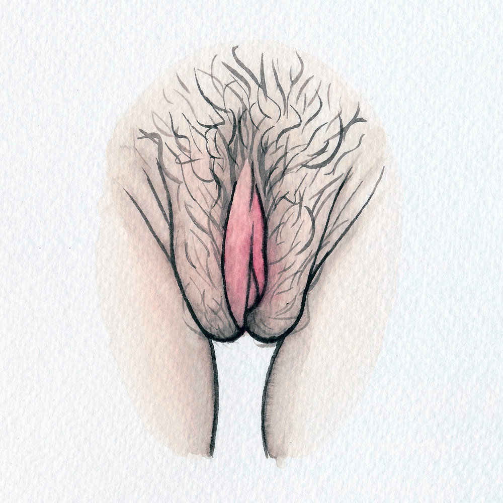 The Vulva Gallery - Vulva Portrait #11 (square).jpg
