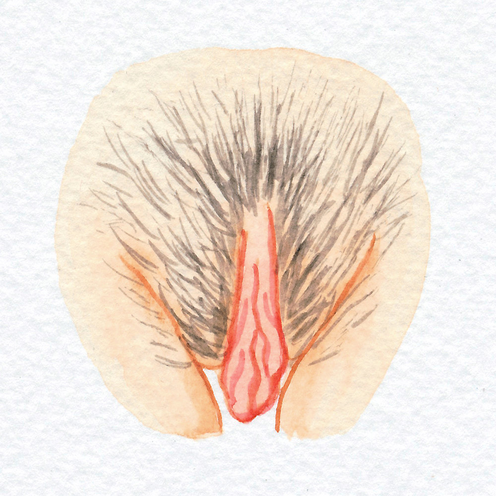 The Vulva Gallery - Vulva Portrait #5.jpg