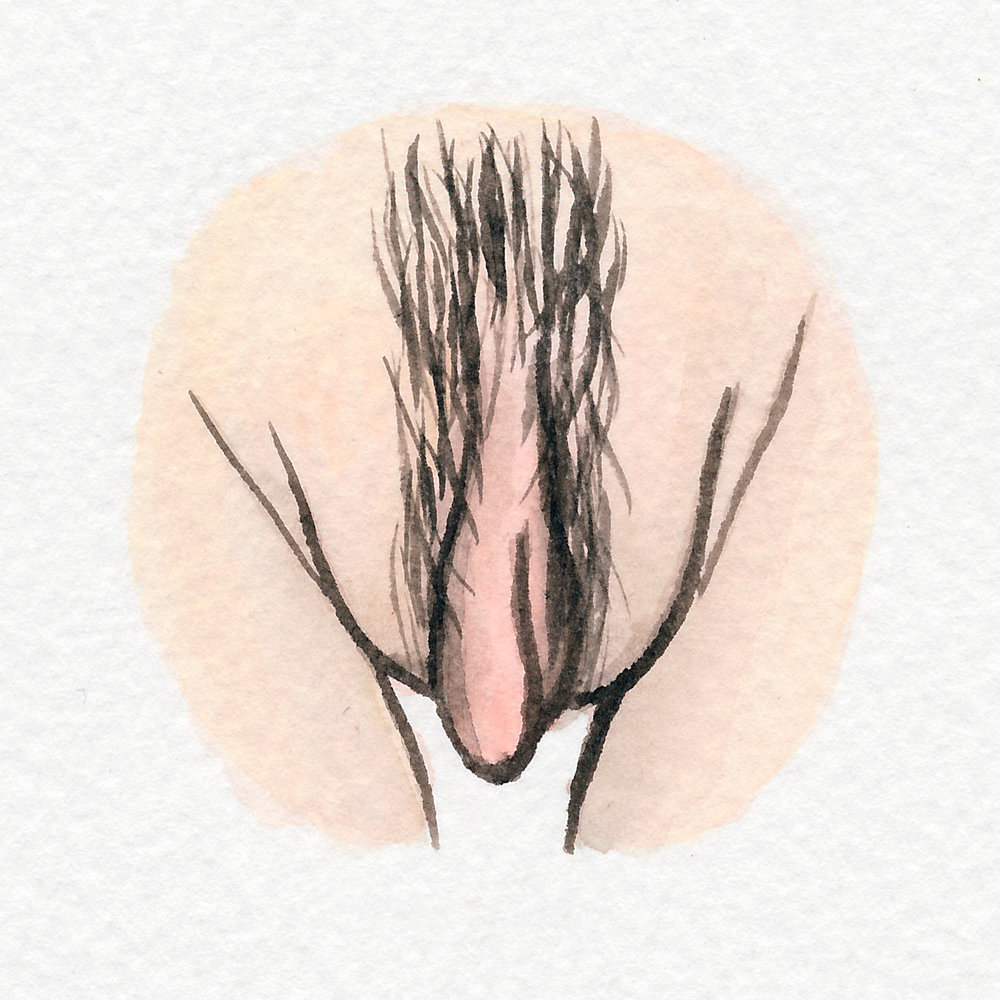 The Vulva Gallery - Vulva Portrait #42.jpg