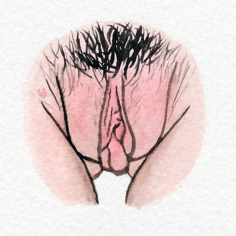 The Vulva Gallery - Vulva Portrait #36.jpg