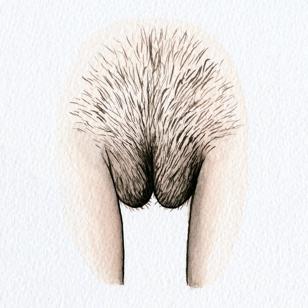 The Vulva Gallery - Vulva Portrait #48 (square).jpg