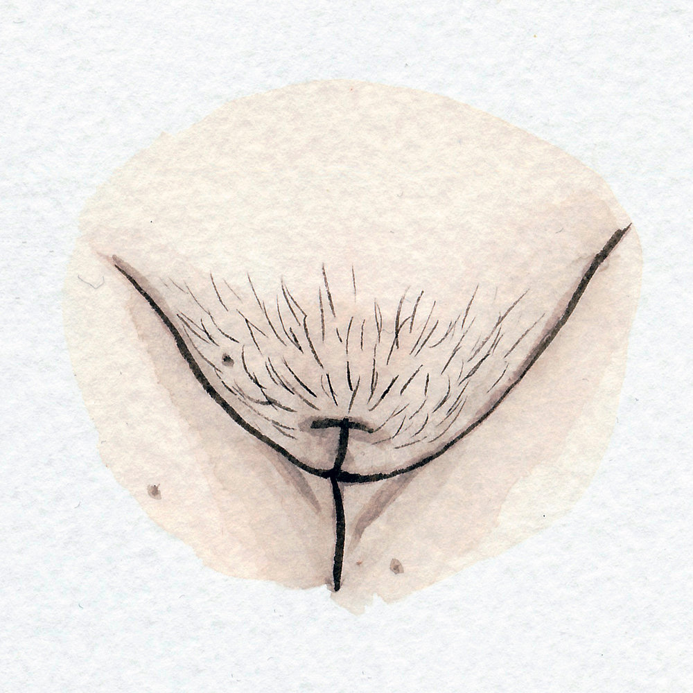 The Vulva Gallery - Vulva Portrait #63.jpg