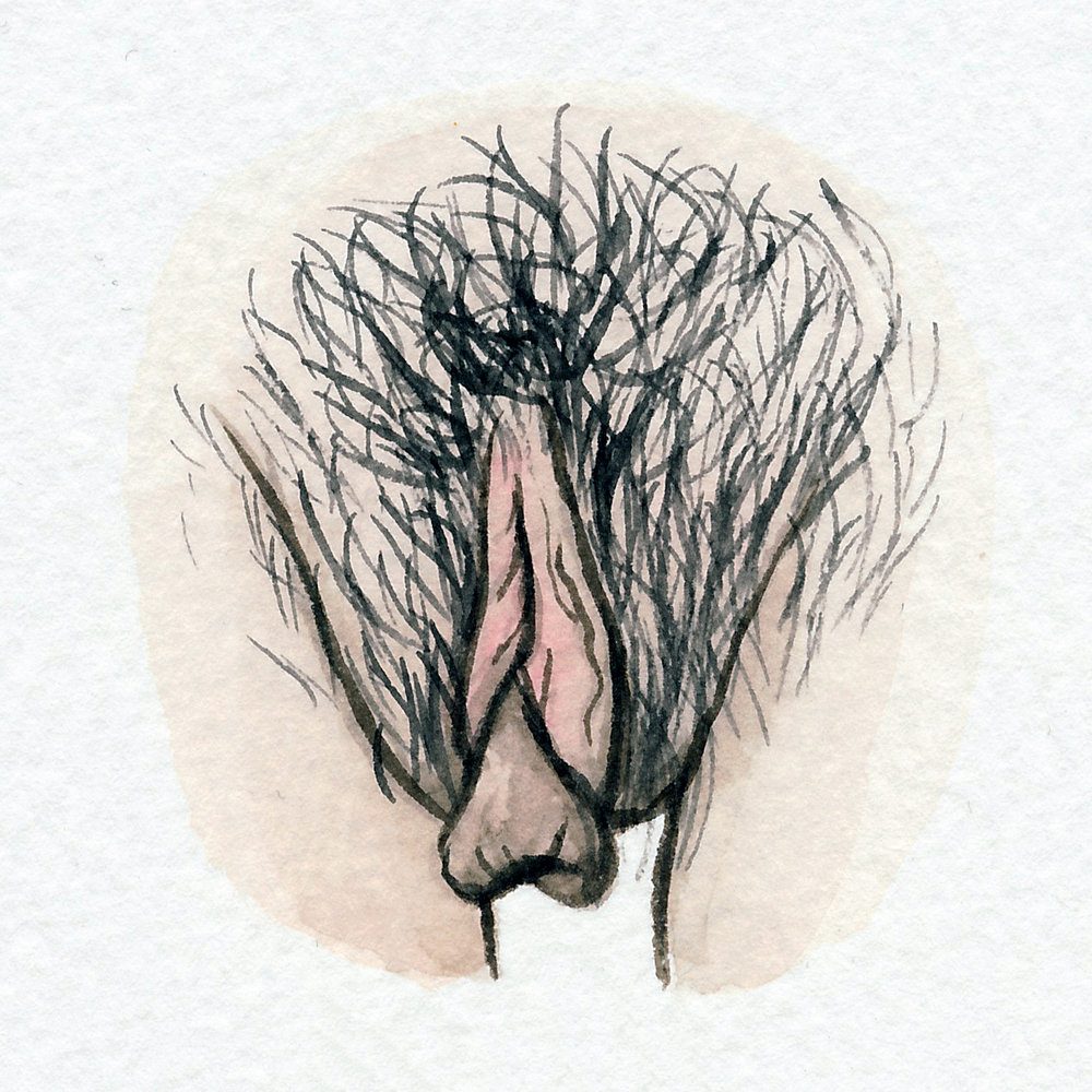 The Vulva Gallery - Vulva Portrait #65.jpg