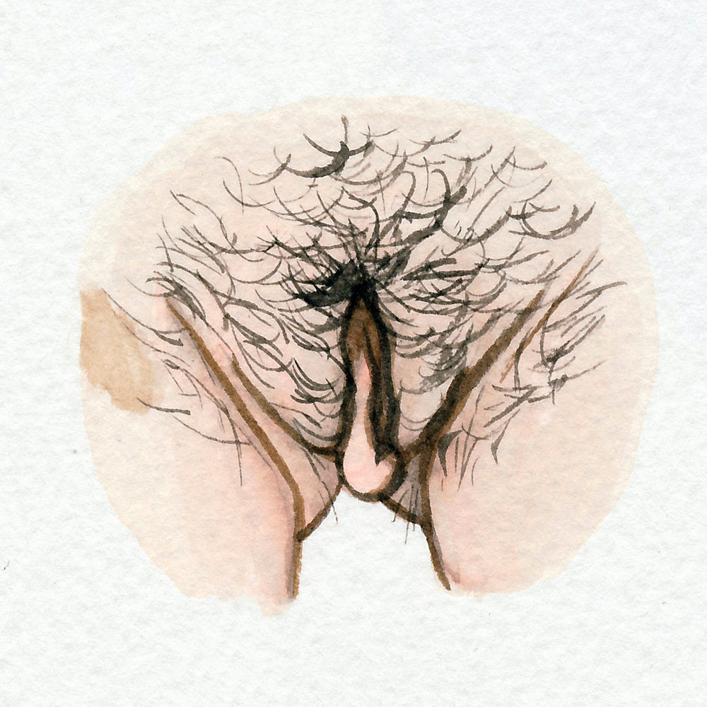 The Vulva Gallery - Vulva Portrait #67.jpg