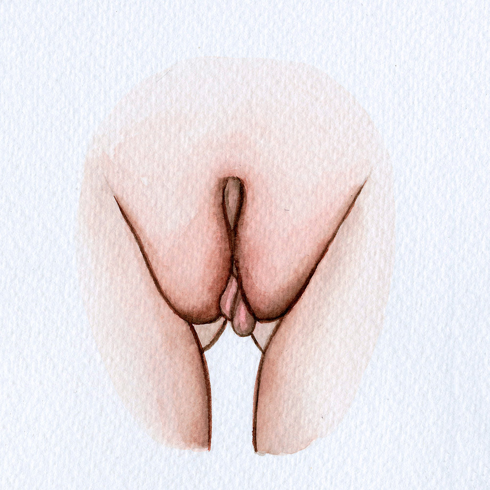 The Vulva Gallery - Vulva Portrait #18 (square).jpg