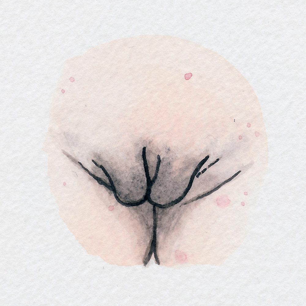 The Vulva Gallery - Vulva Portrait #90.jpg