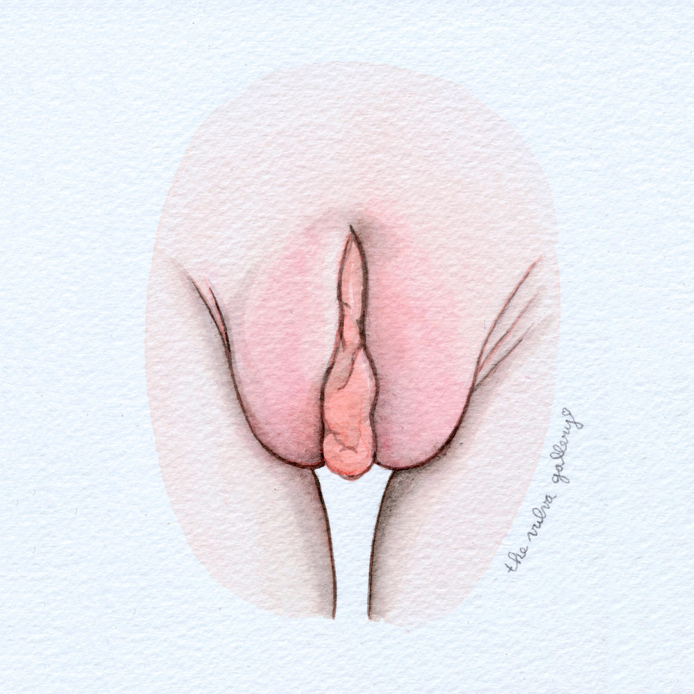 The Vulva Gallery - Vulva Portrait #120 (s).jpg