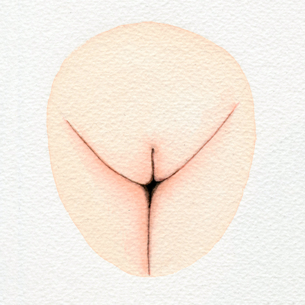 The Vulva Gallery - Vulva Portrait #163 (s).jpg