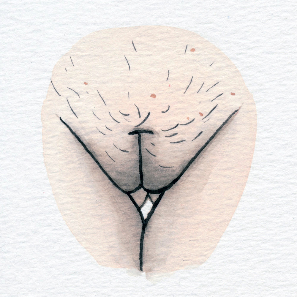 The Vulva Gallery - Vulva Portrait #173.jpg