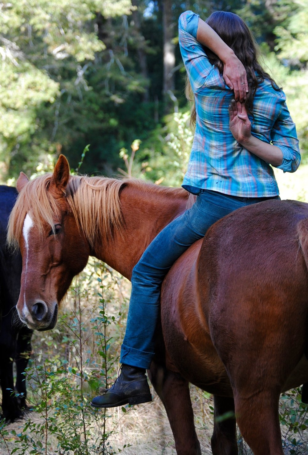 Seasonal Special:Yoga with horses - Breathe, release, stretch, connect, radiate.Be.Need we say more?
