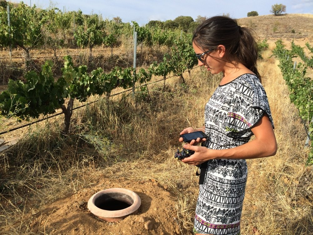 Maria Alfonso in vineyard