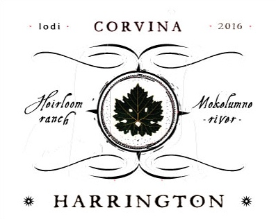 harrington-16-corvina-web-front.jpg