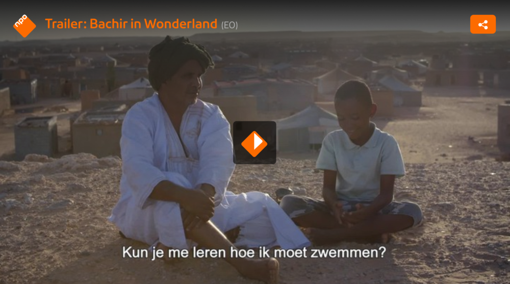 Bachir is dreaming of swimming in the sea.But he lives in a refugee camp in the middle of the desert. Despite not having a passport, Bachir is given the chance of his life, he is invited to join a summercamp in Spain. Will his wish finally come true?