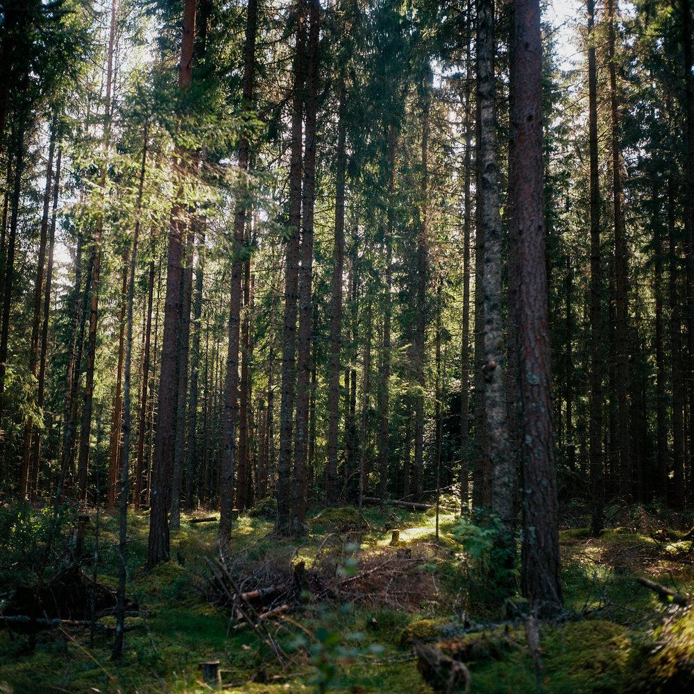 Östra Örten | Sweden