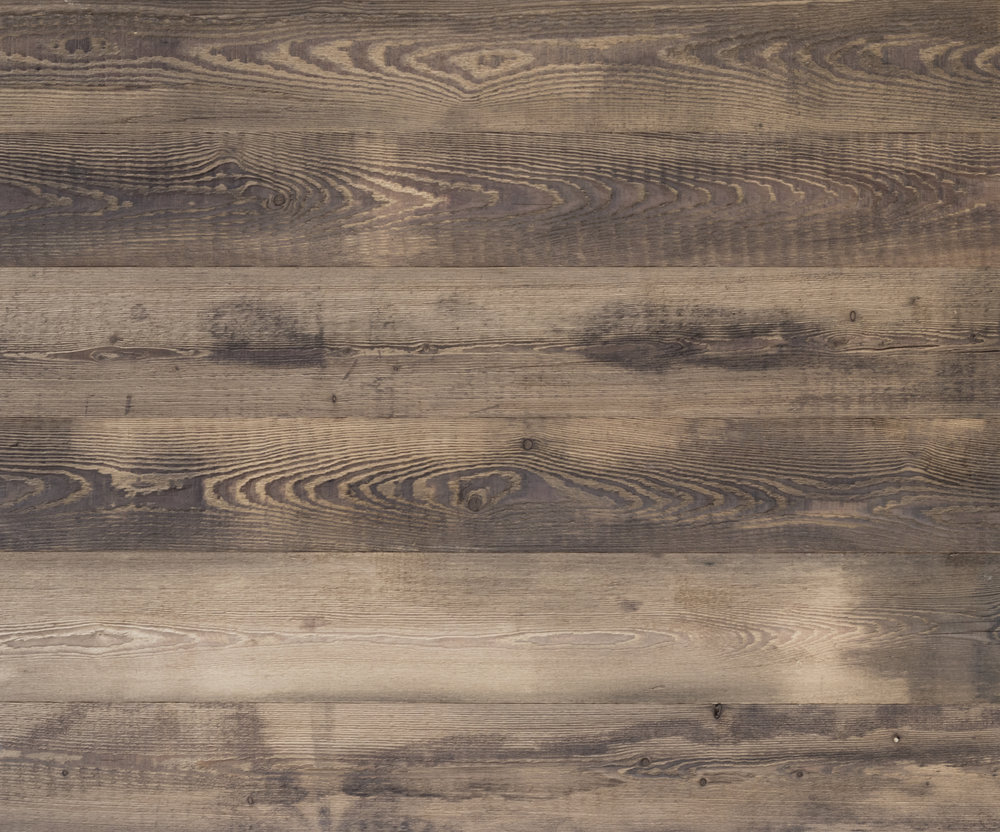 Larch Bio Stained