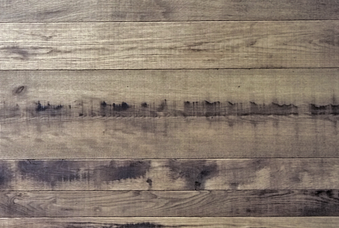 Oak Bio Stained
