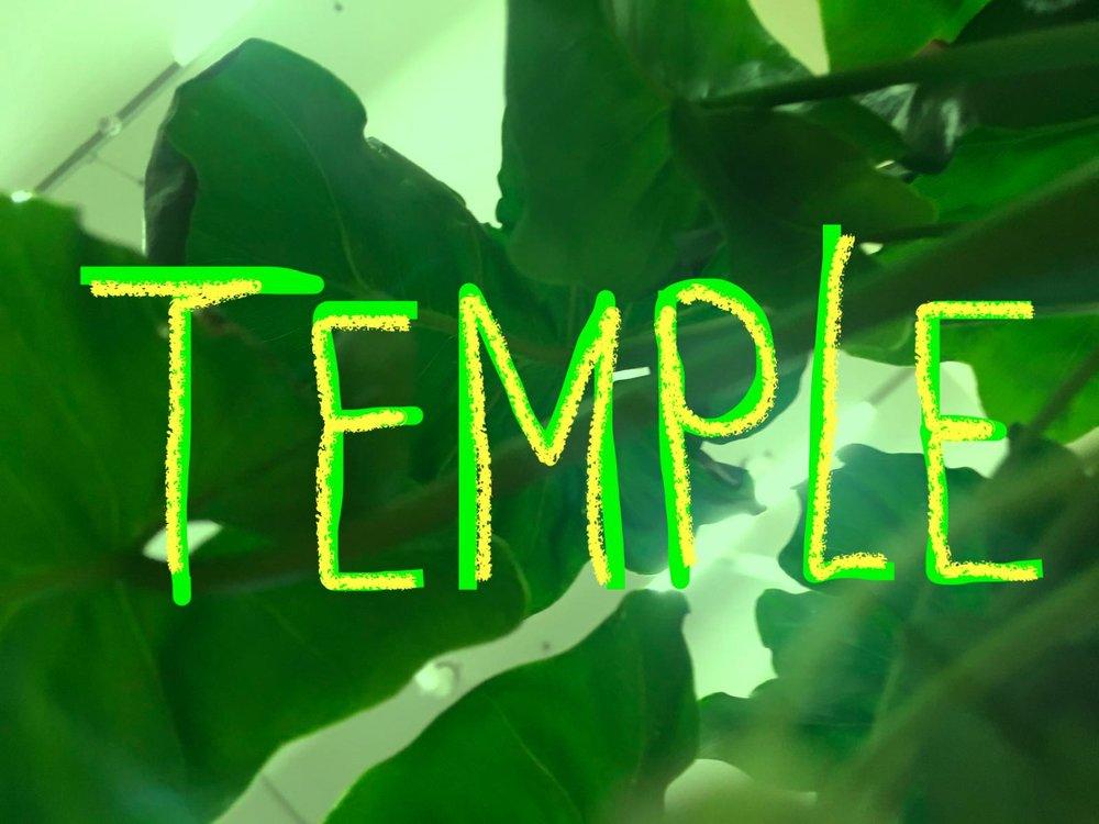 temple image.jpeg