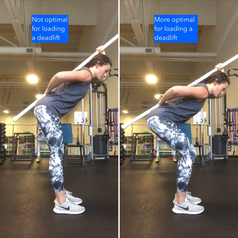 Hip Hinge Comparison.jpg