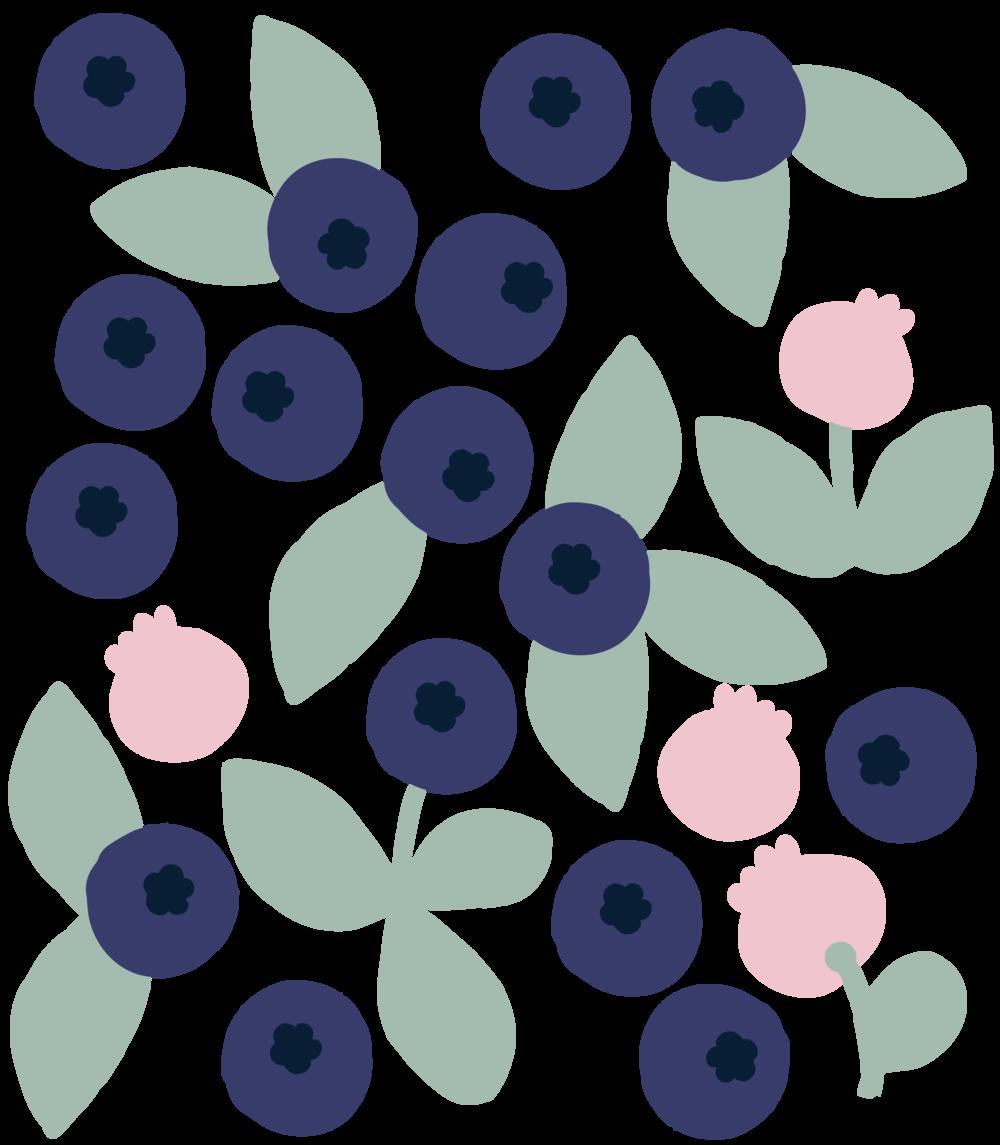 lottamaija_blueberries.png