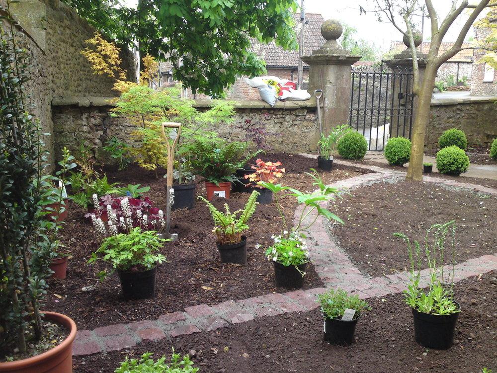 Planting formal front garden.jpg