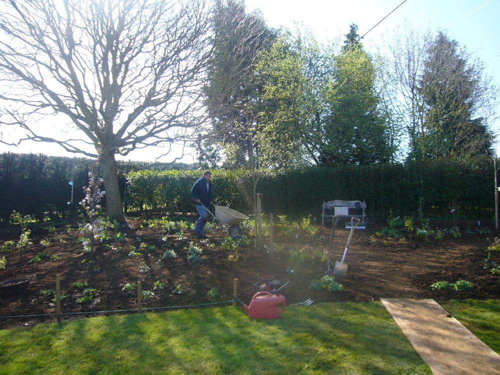 Top of garden during planting 2.JPG