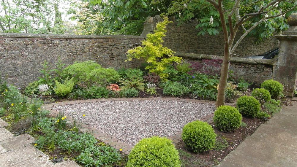 Front garden 6.JPG