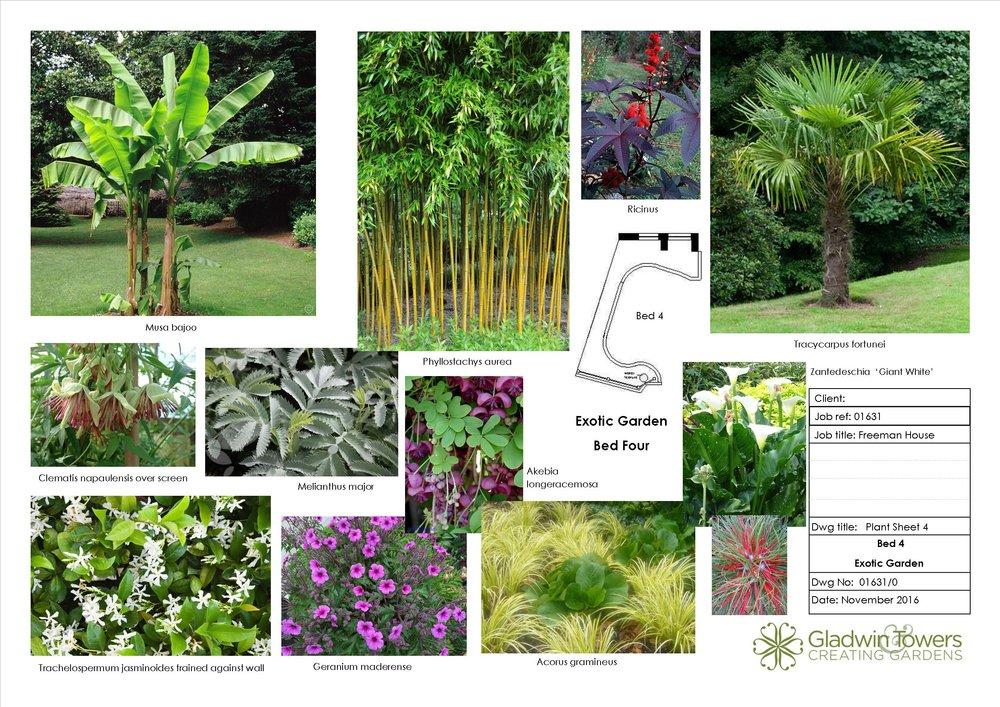 freeman Plant sheet 4.jpg