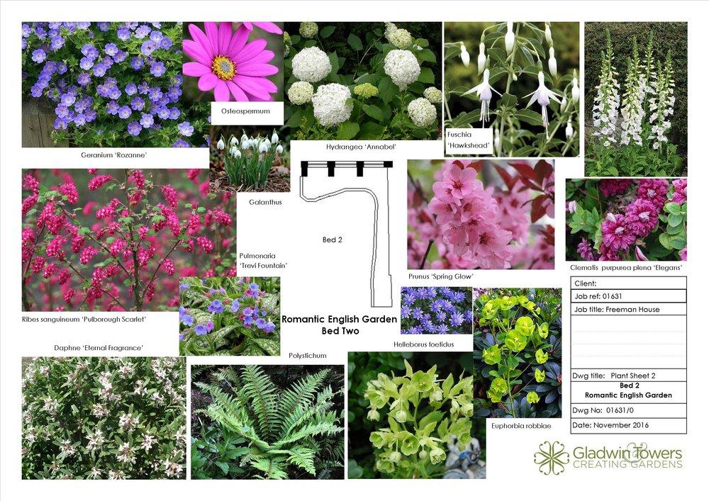 freeman Plant sheet 2.jpg
